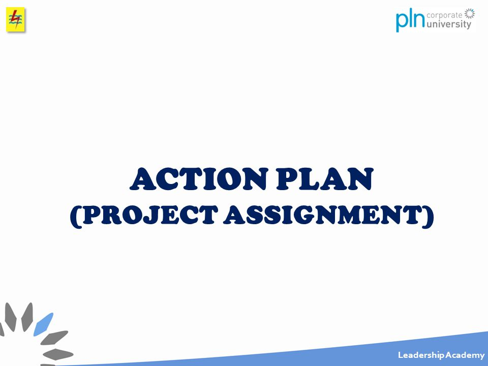 Leadership Academy ACTION PLAN (PROJECT ASSIGNMENT)