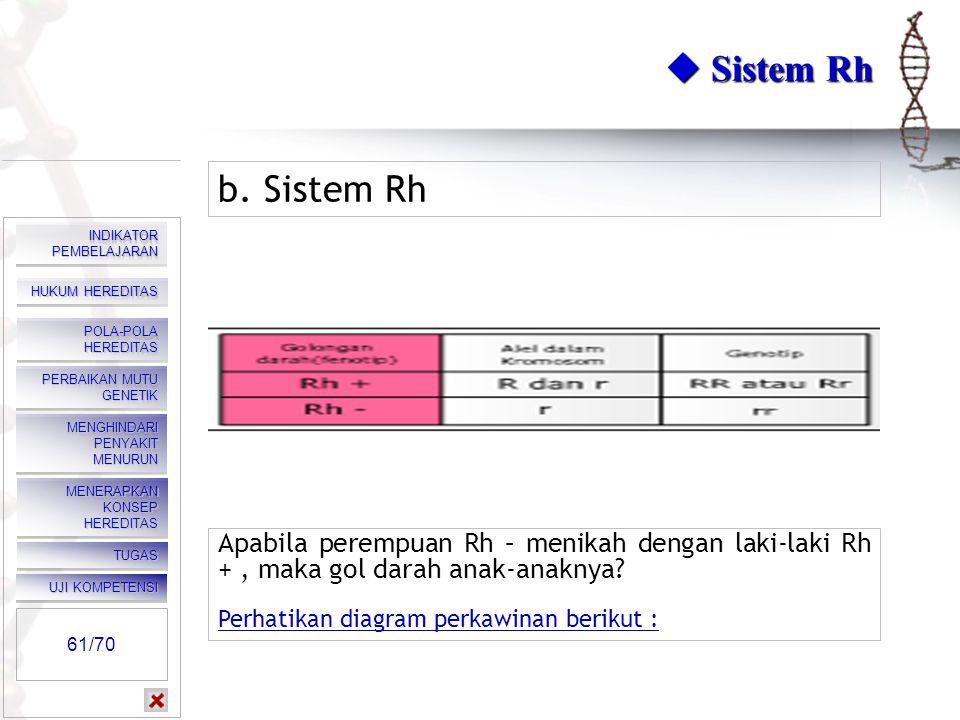  Sistem MN b. Sistem MN Perempuan bergolongan darah N menikah dengan laki-laki bergolongan darah MN, bagaimana golongan darah anak-anaknya? Klik kana
