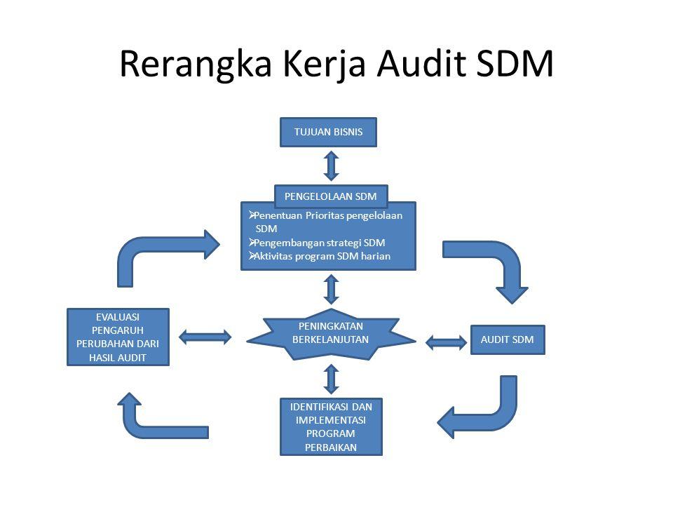 Rerangka Kerja Audit SDM TUJUAN BISNIS  Penentuan Prioritas pengelolaan SDM  Pengembangan strategi SDM  Aktivitas program SDM harian PENGELOLAAN SDM IDENTIFIKASI DAN IMPLEMENTASI PROGRAM PERBAIKAN AUDIT SDM EVALUASI PENGARUH PERUBAHAN DARI HASIL AUDIT PENINGKATAN BERKELANJUTAN