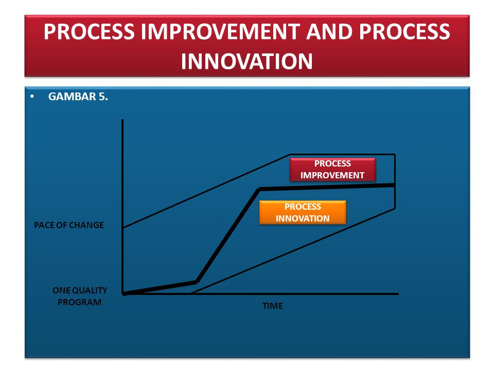 PROCESS IMPROVEMENT AND PROCESS INNOVATION • GAMBAR 5.