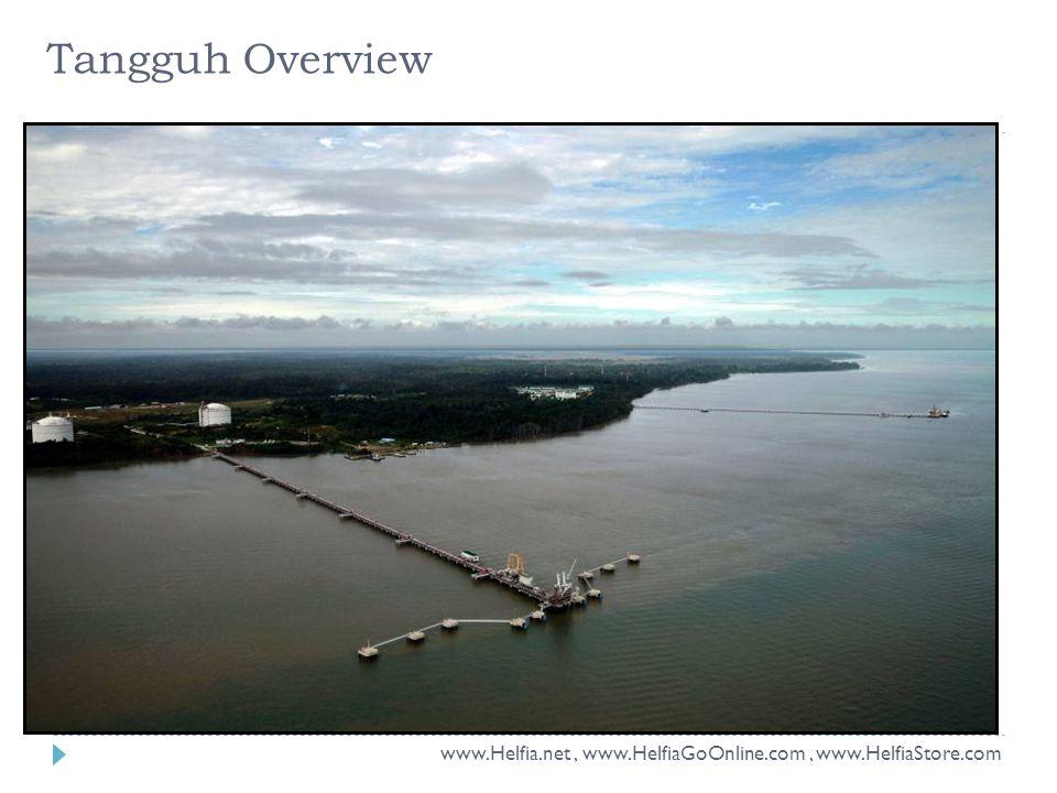 Tangguh Overview www.Helfia.net, www.HelfiaGoOnline.com, www.HelfiaStore.com