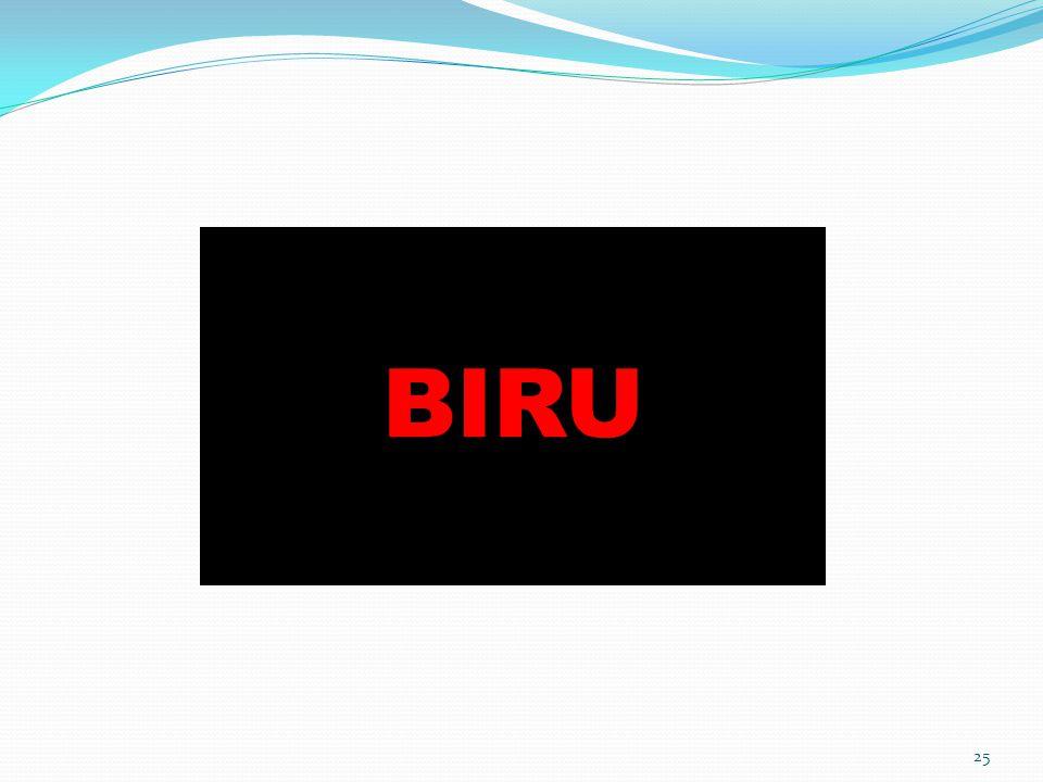 25 BIRU