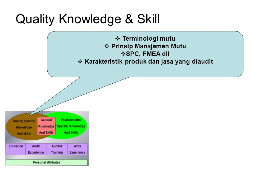 Quality Knowledge & Skill  Terminologi mutu  Prinsip Manajemen Mutu  SPC, FMEA dll  Karakteristik produk dan jasa yang diaudit