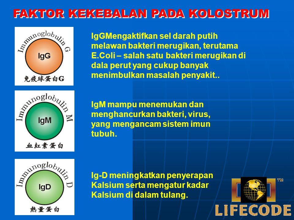 Selain itu, Kolostrum juga mengandung HORMON, ENZYM, serta FAKTOR PERTUMBUHAN (IgF1, IgF2, TgF A, TgF B, EgF, FgF, dll) yang berfungsi untuk meningkat