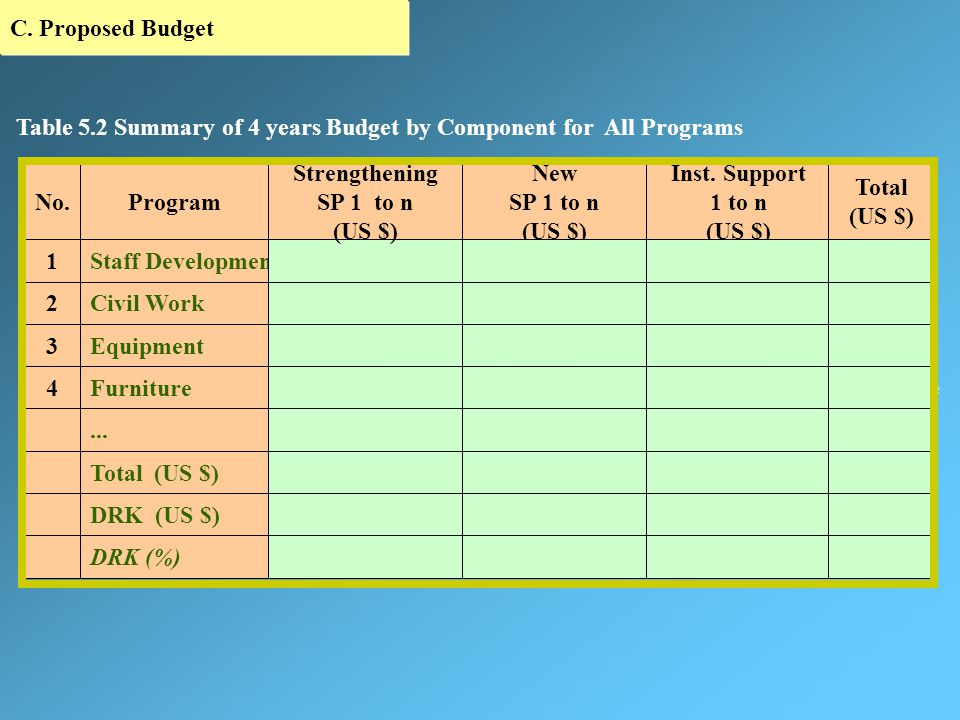 C. Proposed Budget First Year Strengthening SP 1 ……… SP n Establishing New SP 1 Institutional Support 1 ……… SP n Annual DRK Total Proposed Budget Prog