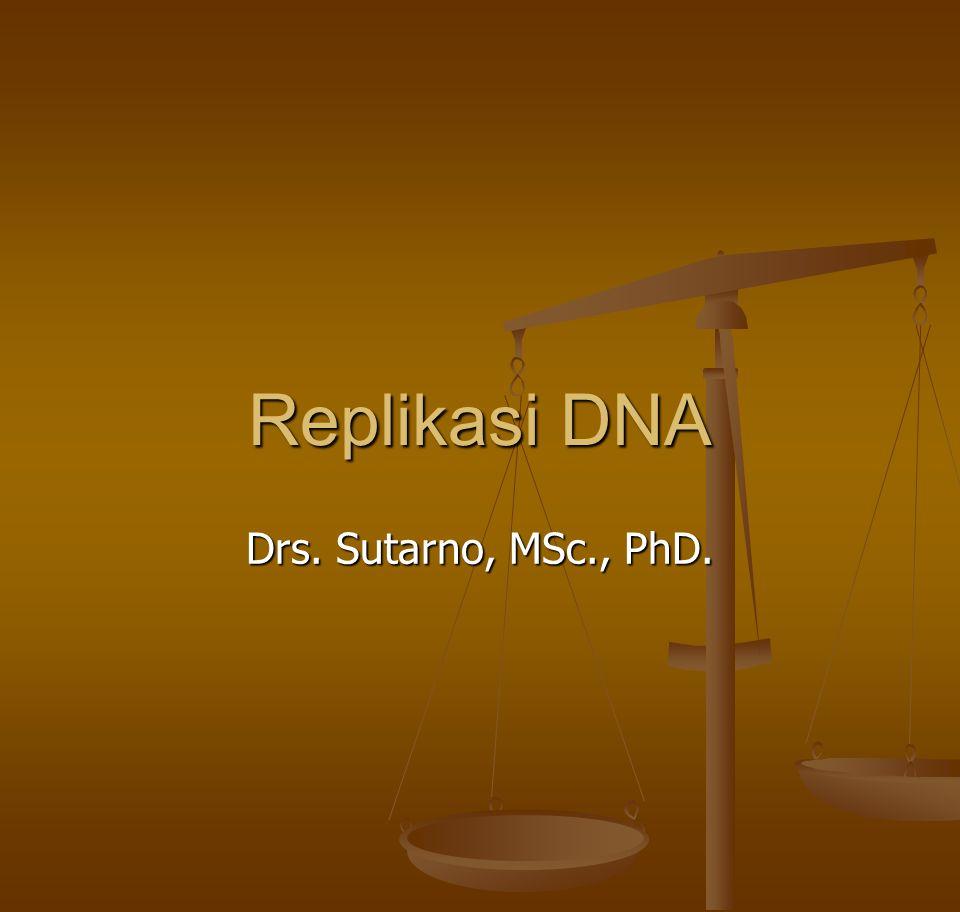 Replikasi DNA Drs. Sutarno, MSc., PhD.