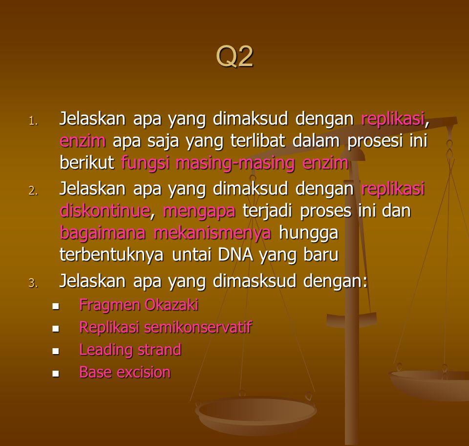 Q2 1. Jelaskan apa yang dimaksud dengan replikasi, enzim apa saja yang terlibat dalam prosesi ini berikut fungsi masing-masing enzim 2. Jelaskan apa y