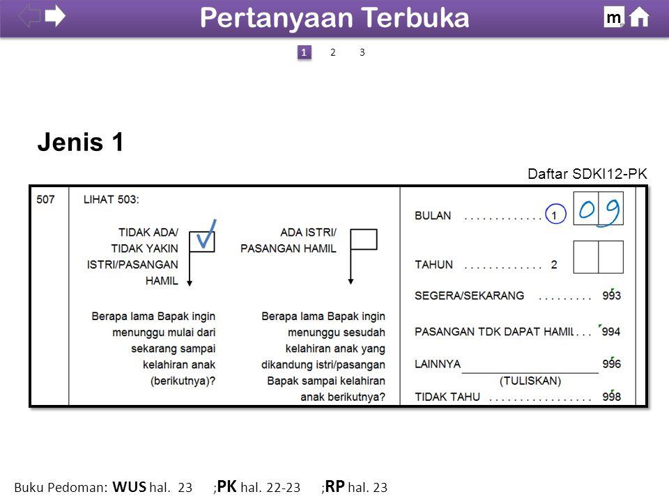 09 Jenis 1 Daftar SDKI12-PK 100% SDKI 2012 Pertanyaan Terbuka m 1 1 23 Buku Pedoman: WUS hal. 23 ; PK hal. 22-23 ; RP hal. 23