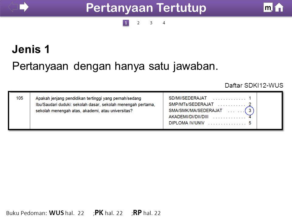 Jenis 1 Daftar SDKI12-WUS 100% SDKI 2012 Pertanyaan Tertutup m 1 1 423 Buku Pedoman: WUS hal. 22 ; PK hal. 22 ; RP hal. 22 Pertanyaan dengan hanya sat