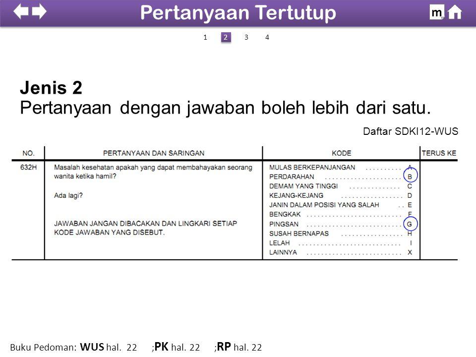 Jenis 2 Daftar SDKI12-WUS 100% SDKI 2012 Pertanyaan Tertutup m 14 2 2 3 Buku Pedoman: WUS hal. 22 ; PK hal. 22 ; RP hal. 22 Pertanyaan dengan jawaban