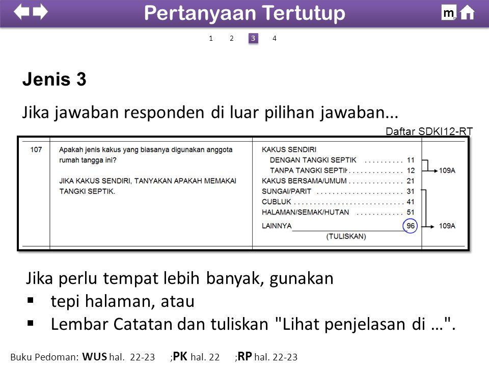Jenis 3 Jika jawaban responden di luar pilihan jawaban...