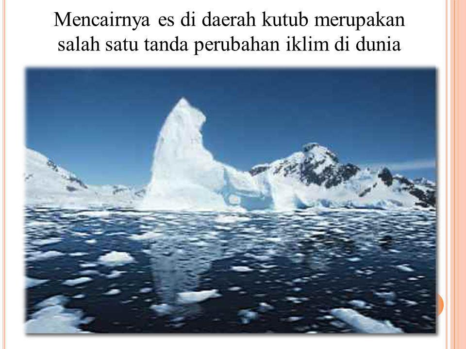Mencairnya es di daerah kutub merupakan salah satu tanda perubahan iklim di dunia