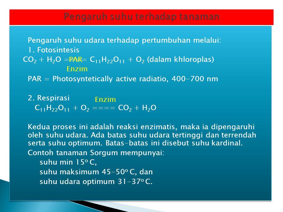 Pengaruh suhu udara terhadap pertumbuhan melalui: 1. Fotosintesis CO 2 + H 2 O ==== C 11 H 22 O 11 + O 2 (dalam khloroplas) PAR = Photosyntetically ac