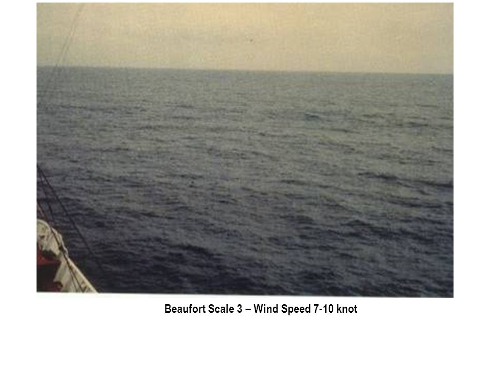 Beaufort Scale 3 – Wind Speed 7-10 knot