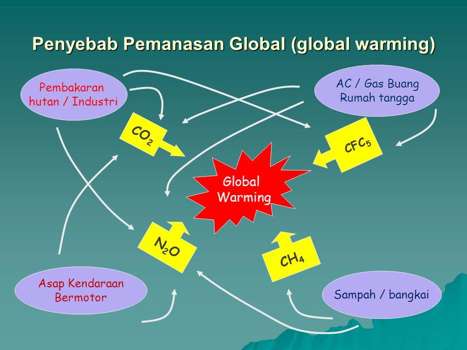 Penyebab Pemanasan Global (global warming) CO 2 N2ON2O CH 4 Global Warming Pembakaran hutan / Industri AC / Gas Buang Rumah tangga Asap Kendaraan Berm