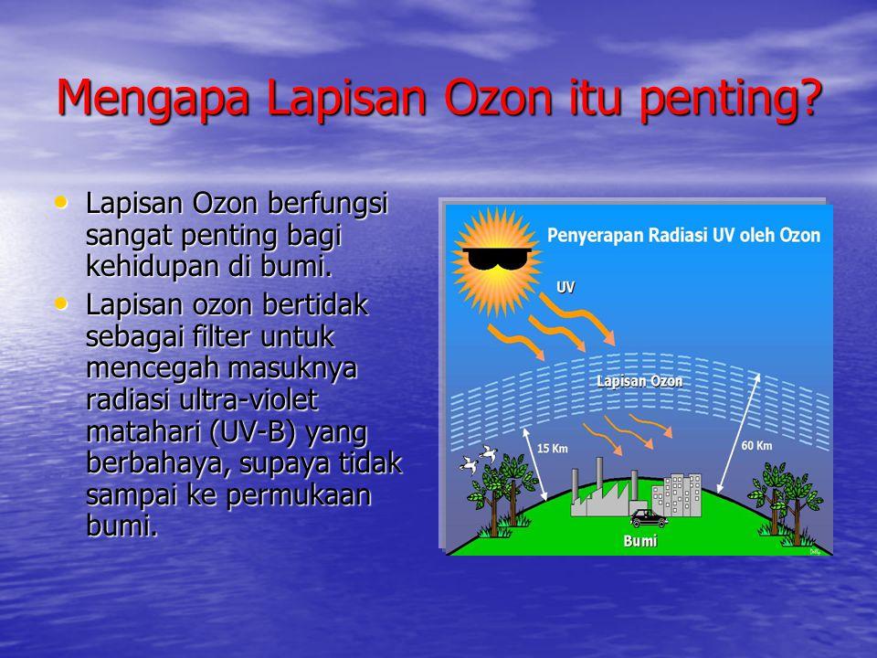 Mengapa Lapisan Ozon itu penting? • Lapisan Ozon berfungsi sangat penting bagi kehidupan di bumi. • Lapisan ozon bertidak sebagai filter untuk mencega