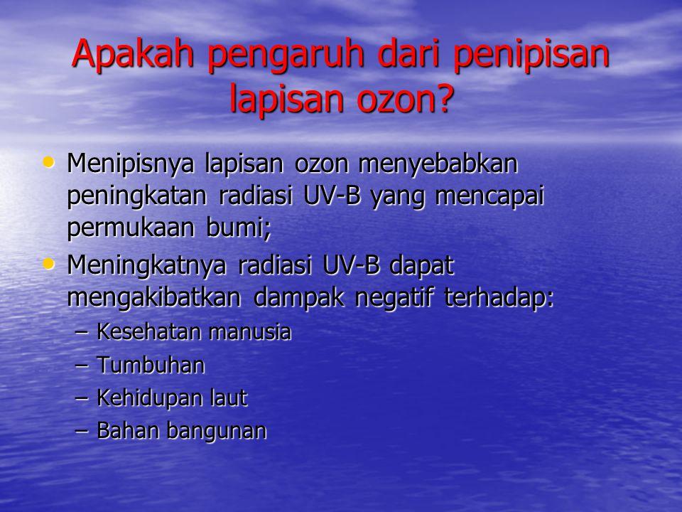 Apakah pengaruh dari penipisan lapisan ozon? • Menipisnya lapisan ozon menyebabkan peningkatan radiasi UV-B yang mencapai permukaan bumi; • Meningkatn