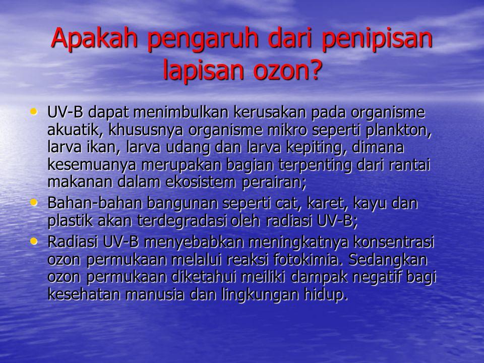 Apakah pengaruh dari penipisan lapisan ozon? • UV-B dapat menimbulkan kerusakan pada organisme akuatik, khususnya organisme mikro seperti plankton, la