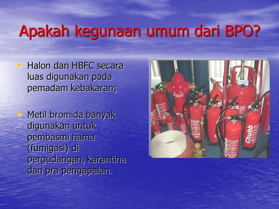 Apakah kegunaan umum dari BPO? • Halon dan HBFC secara luas digunakan pada pemadam kebakaran; • Metil bromida banyak digunakan untuk pembasmi hama (fu