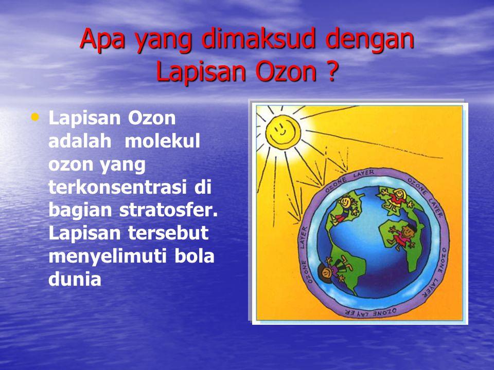 Apa yang dimaksud dengan Lapisan Ozon ? • • Lapisan Ozon adalah molekul ozon yang terkonsentrasi di bagian stratosfer. Lapisan tersebut menyelimuti bo