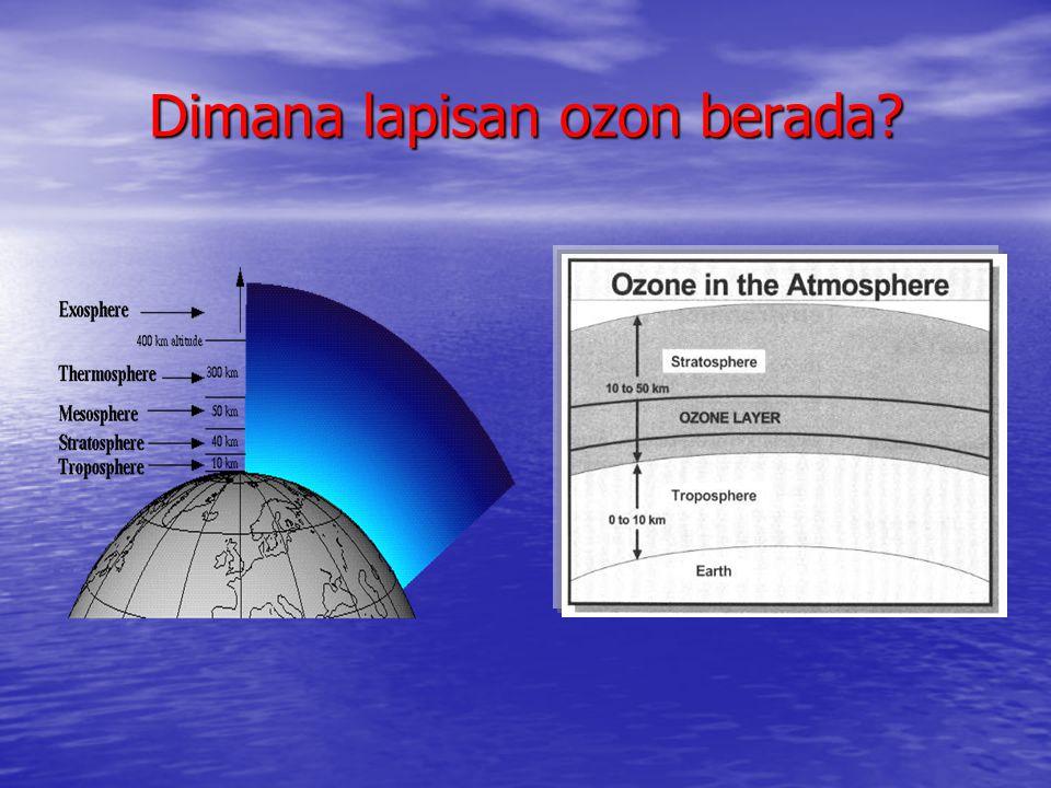 Dimana lapisan ozon berada?