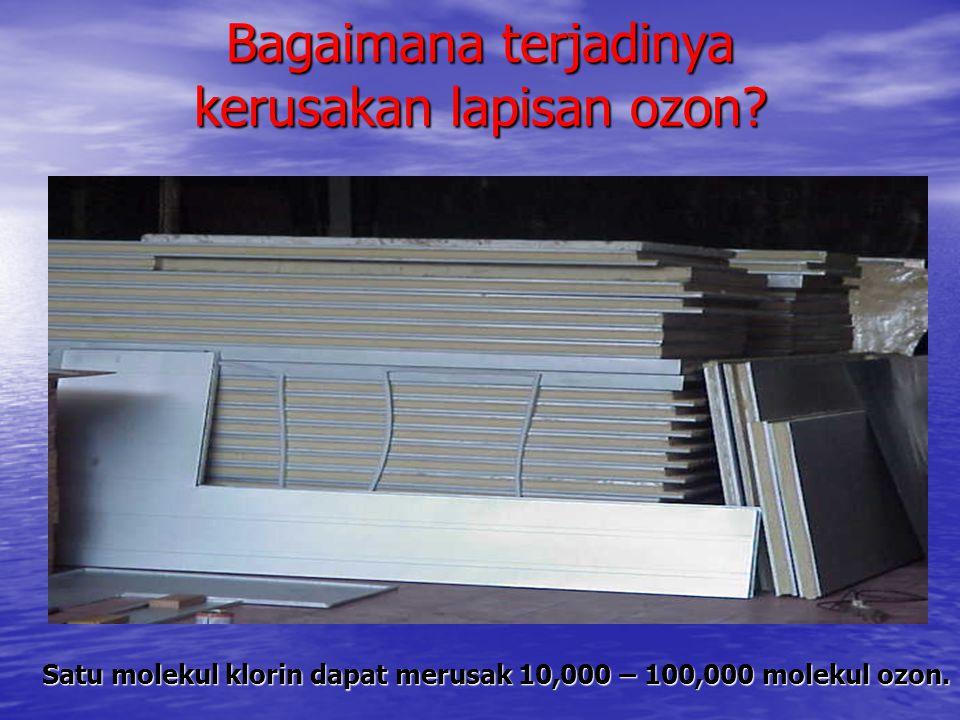 Bagan Jaringan Pemantauan Deposisi Asam di Indonesia Secretariat for EANET Network Center For EANET National Focal Point KLH National Center Asdep Sarpedal - KLH LAPAN deposisi basah, deposisi kering BMG deposisi basah Puslitbang Tanah & Agroklimat kualitas tanah & vegetasi Asdep Sarpedal Deposisi kering, deposisi basah & kualitas tanah Puslitbang Sumber Daya Air Kualitas perairan darat