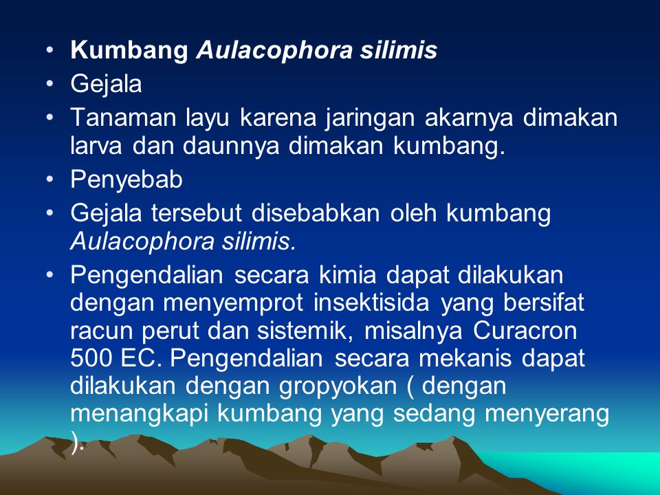 •Kumbang Aulacophora silimis •Gejala •Tanaman layu karena jaringan akarnya dimakan larva dan daunnya dimakan kumbang. •Penyebab •Gejala tersebut diseb
