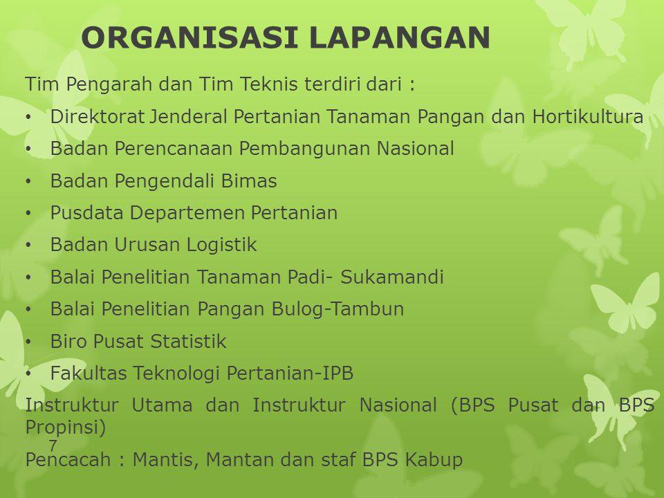 ORGANISASI LAPANGAN Tim Pengarah dan Tim Teknis terdiri dari : • Direktorat Jenderal Pertanian Tanaman Pangan dan Hortikultura • Badan Perencanaan Pem