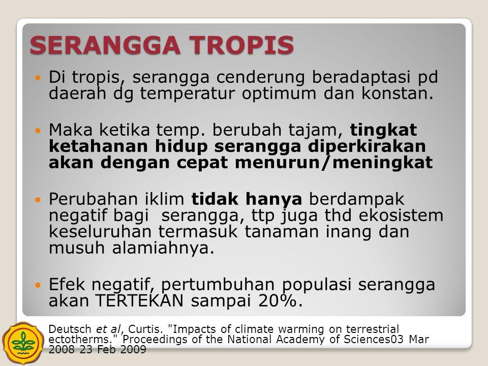 SERANGGA TROPIS  Di tropis, serangga cenderung beradaptasi pd daerah dg temperatur optimum dan konstan.  Maka ketika temp. berubah tajam, tingkat ke