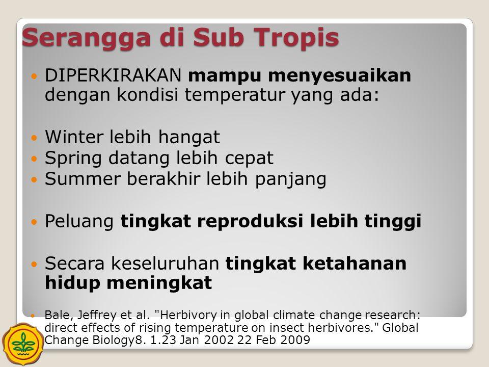 Serangga di Sub Tropis  DIPERKIRAKAN mampu menyesuaikan dengan kondisi temperatur yang ada:  Winter lebih hangat  Spring datang lebih cepat  Summe