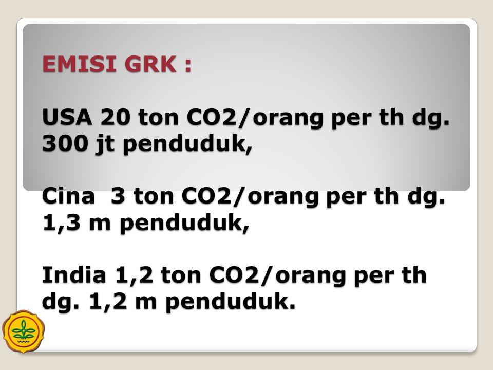 EMISI GRK : USA 20 ton CO2/orang per th dg. 300 jt penduduk, Cina 3 ton CO2/orang per th dg. 1,3 m penduduk, India 1,2 ton CO2/orang per th dg. 1,2 m