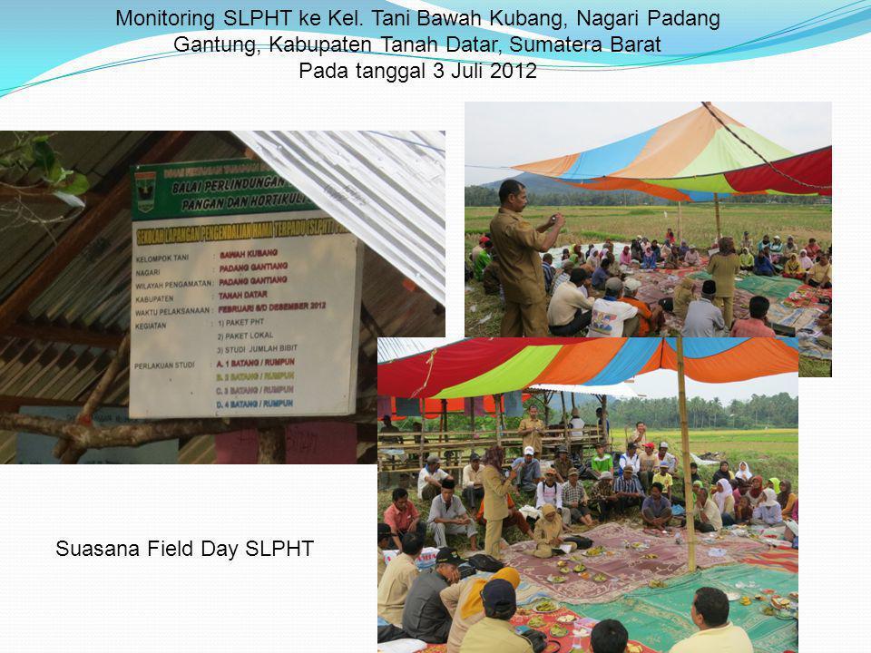 Monitoring SLPHT ke Kel. Tani Bawah Kubang, Nagari Padang Gantung, Kabupaten Tanah Datar, Sumatera Barat Pada tanggal 3 Juli 2012 Suasana Field Day SL