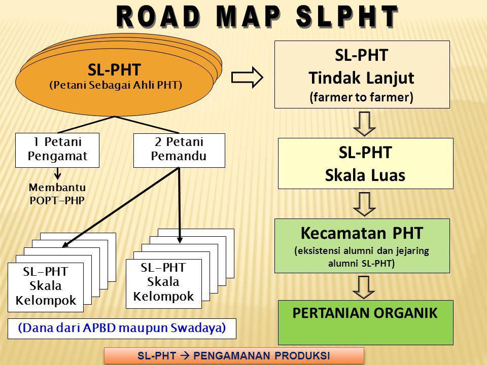 SL-PHT Tindak Lanjut (farmer to farmer) SL-PHT Skala Luas Kecamatan PHT (eksistensi alumni dan jejaring alumni SL-PHT) 2 Petani Pemandu 1 Petani Penga