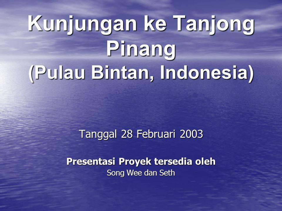 Kunjungan ke Tanjong Pinang (Pulau Bintan, Indonesia) Tanggal 28 Februari 2003 Presentasi Proyek tersedia oleh Song Wee dan Seth