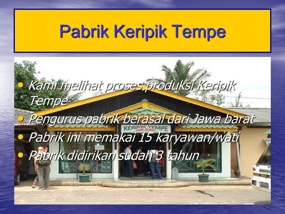 Pabrik Keripik Tempe • Kami melihat proses produksi Keripik Tempe • Pengurus pabrik berasal dari Jawa barat • Pabrik ini memakai 15 karyawan/wati • Pa