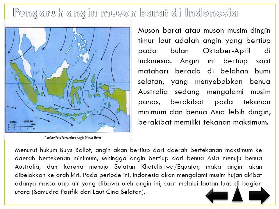 Muson barat atau muson musim dingin timur laut adalah angin yang bertiup pada bulan Oktober-April di Indonesia.