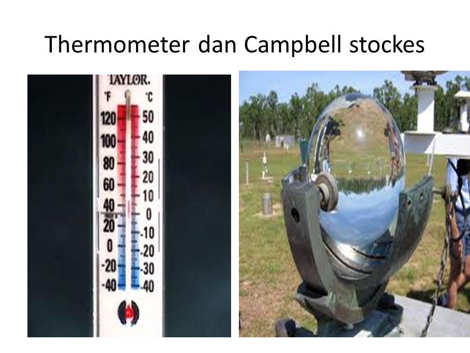 Thermometer dan Campbell stockes