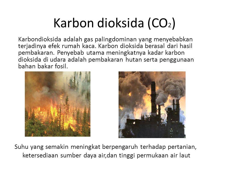 Karbon dioksida (CO 2 ) Karbondioksida adalah gas palingdominan yang menyebabkan terjadinya efek rumah kaca. Karbon dioksida berasal dari hasil pembak
