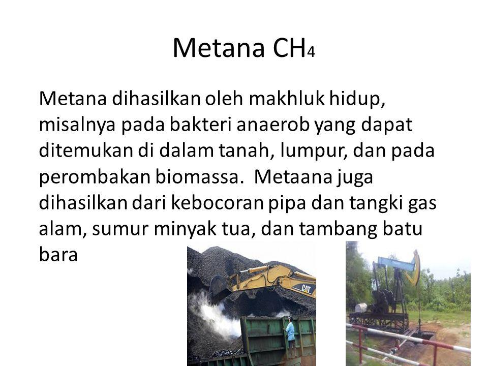 Metana CH 4 Metana dihasilkan oleh makhluk hidup, misalnya pada bakteri anaerob yang dapat ditemukan di dalam tanah, lumpur, dan pada perombakan bioma