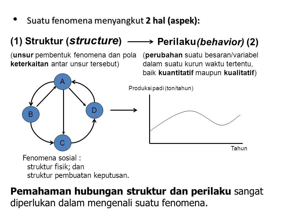 • Suatu fenomena menyangkut 2 hal (aspek): (1) Struktur ( structure ) Perilaku (behavior) (2) (unsur pembentuk fenomena dan pola keterkaitan antar unsur tersebut) (perubahan suatu besaran/variabel dalam suatu kurun waktu tertentu, baik kuantitatif maupun kualitatif) C A D B Tahun Produksi padi (ton/tahun) Fenomena sosial : struktur fisik; dan struktur pembuatan keputusan.