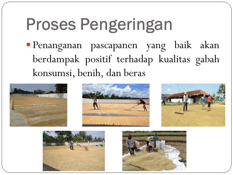 Proses Pengeringan  Penanganan pascapanen yang baik akan berdampak positif terhadap kualitas gabah konsumsi, benih, dan beras