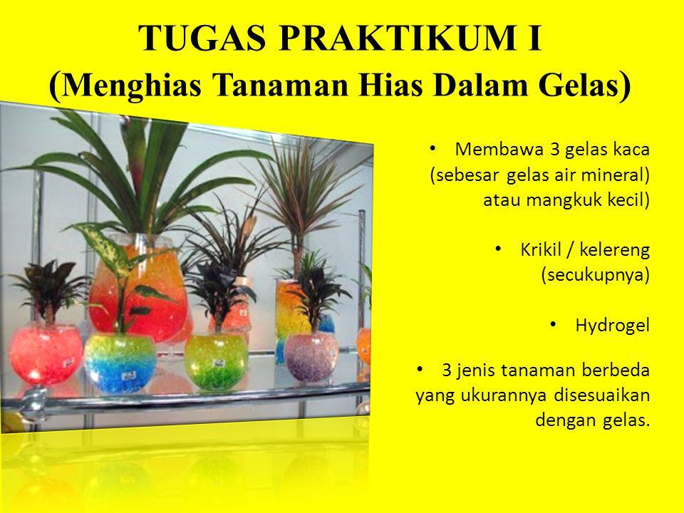 TUGAS PRAKTIKUM I ( Menghias Tanaman Hias Dalam Gelas ) • Membawa 3 gelas kaca (sebesar gelas air mineral) atau mangkuk kecil) • Krikil / kelereng (secukupnya) • Hydrogel • 3 jenis tanaman berbeda yang ukurannya disesuaikan dengan gelas.