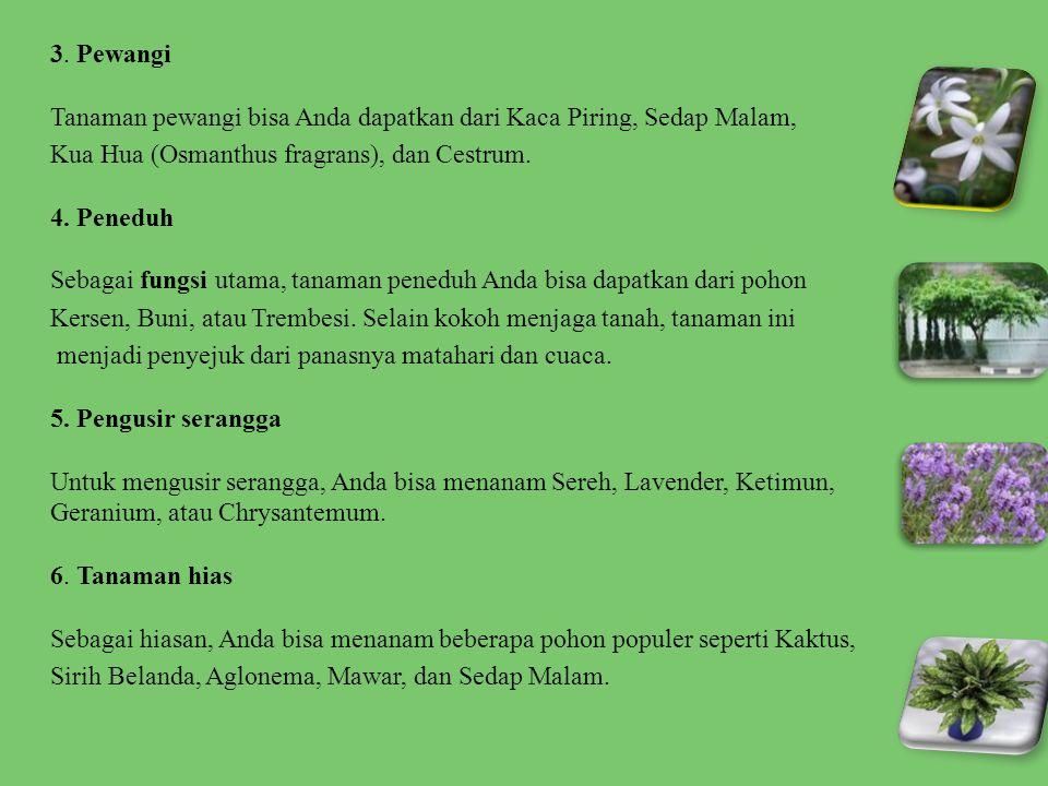 3. Pewangi Tanaman pewangi bisa Anda dapatkan dari Kaca Piring, Sedap Malam, Kua Hua (Osmanthus fragrans), dan Cestrum. 4. Peneduh Sebagai fungsi utam