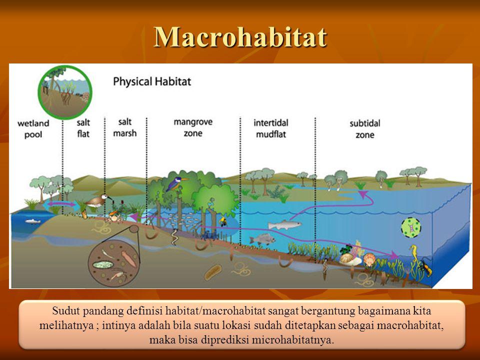 Macrohabitat Sudut pandang definisi habitat/macrohabitat sangat bergantung bagaimana kita melihatnya ; intinya adalah bila suatu lokasi sudah ditetapk