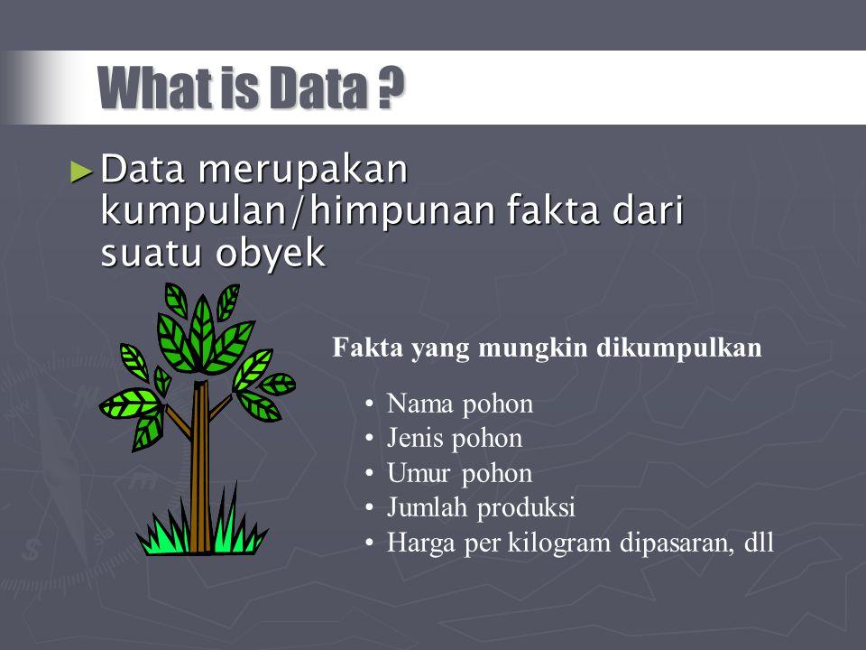 What is Data ? ► Data merupakan kumpulan/himpunan fakta dari suatu obyek Fakta yang mungkin dikumpulkan •Nama pohon •Jenis pohon •Umur pohon •Jumlah p