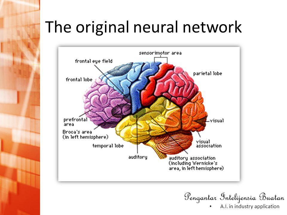 Pengantar Intelijensia Buatan • A.I. in industry application The original neural network