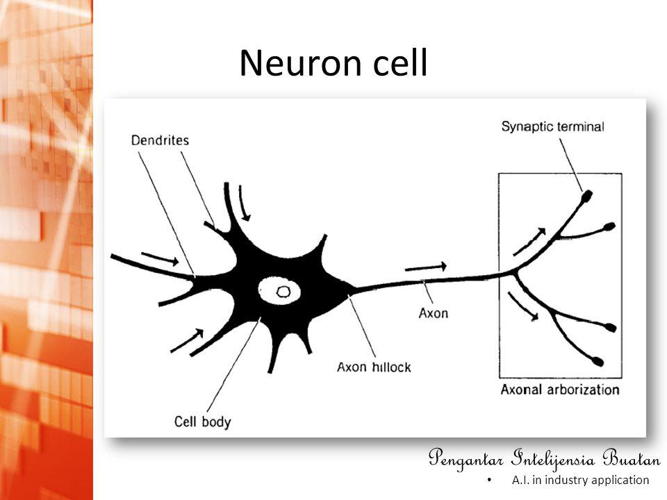 Pengantar Intelijensia Buatan • A.I. in industry application Neuron cell