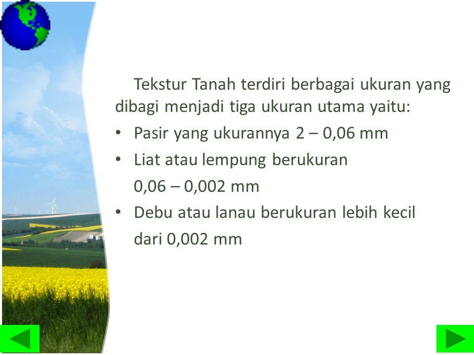 Tekstur Tanah terdiri berbagai ukuran yang dibagi menjadi tiga ukuran utama yaitu: • Pasir yang ukurannya 2 – 0,06 mm • Liat atau lempung berukuran 0,