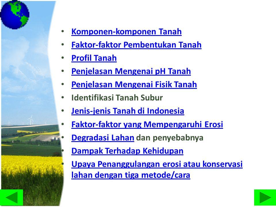 • Komponen-komponen Tanah Komponen-komponen Tanah • Faktor-faktor Pembentukan Tanah Faktor-faktor Pembentukan Tanah • Profil Tanah Profil Tanah • Penj