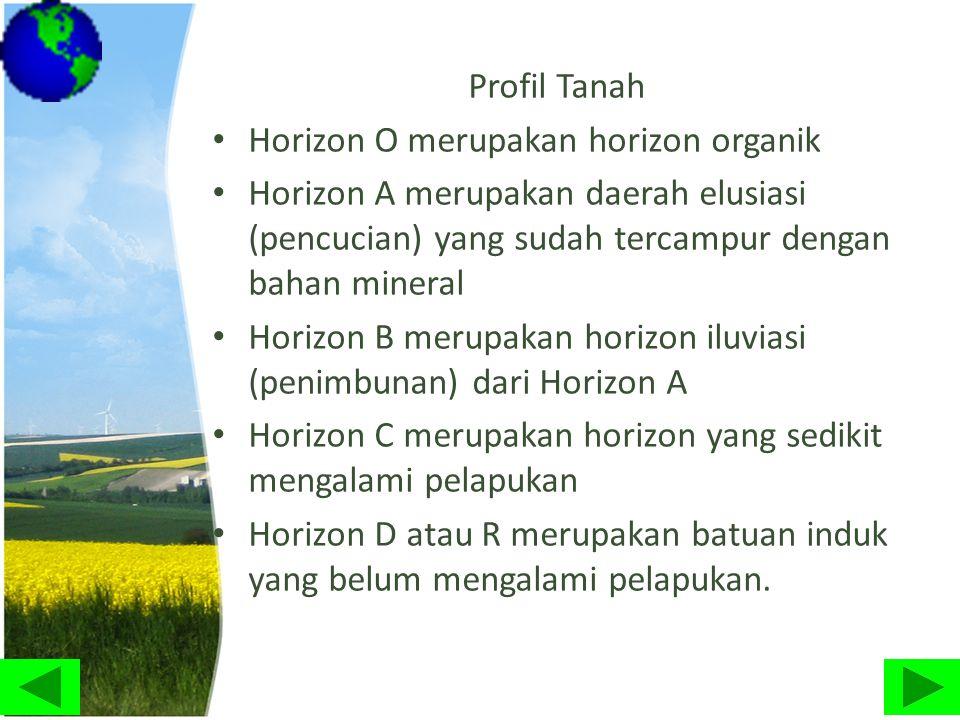 Profil Tanah • Horizon O merupakan horizon organik • Horizon A merupakan daerah elusiasi (pencucian) yang sudah tercampur dengan bahan mineral • Horiz